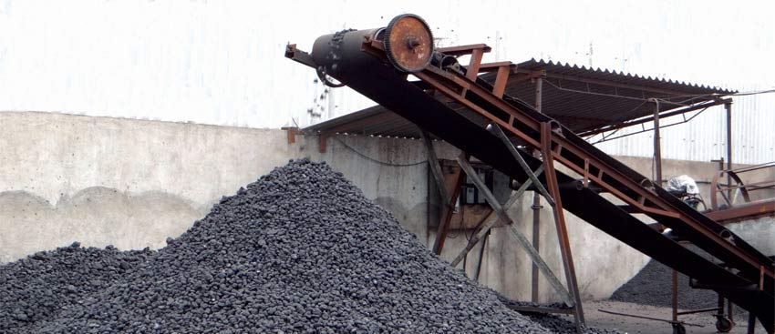 Lifting Conveyor Manufacturing Petcoke